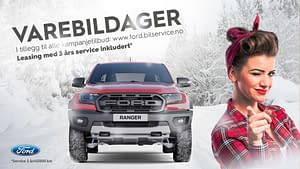 Ford Varebildager