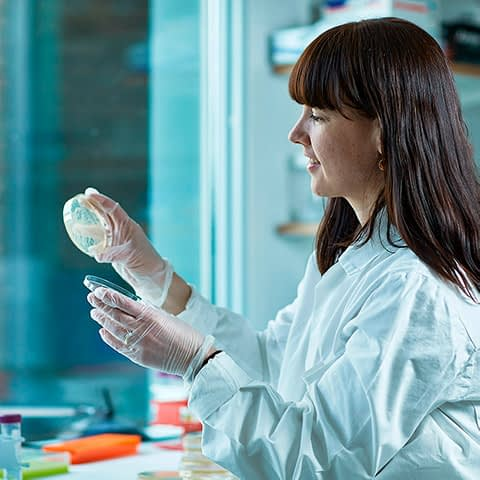 Picture of a Nextera employee holding a petri-dish with a culture of an undisclosed substance